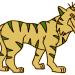 Ireland-tiger