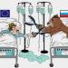 ds-fokus-sanctions