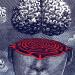 maze-brain
